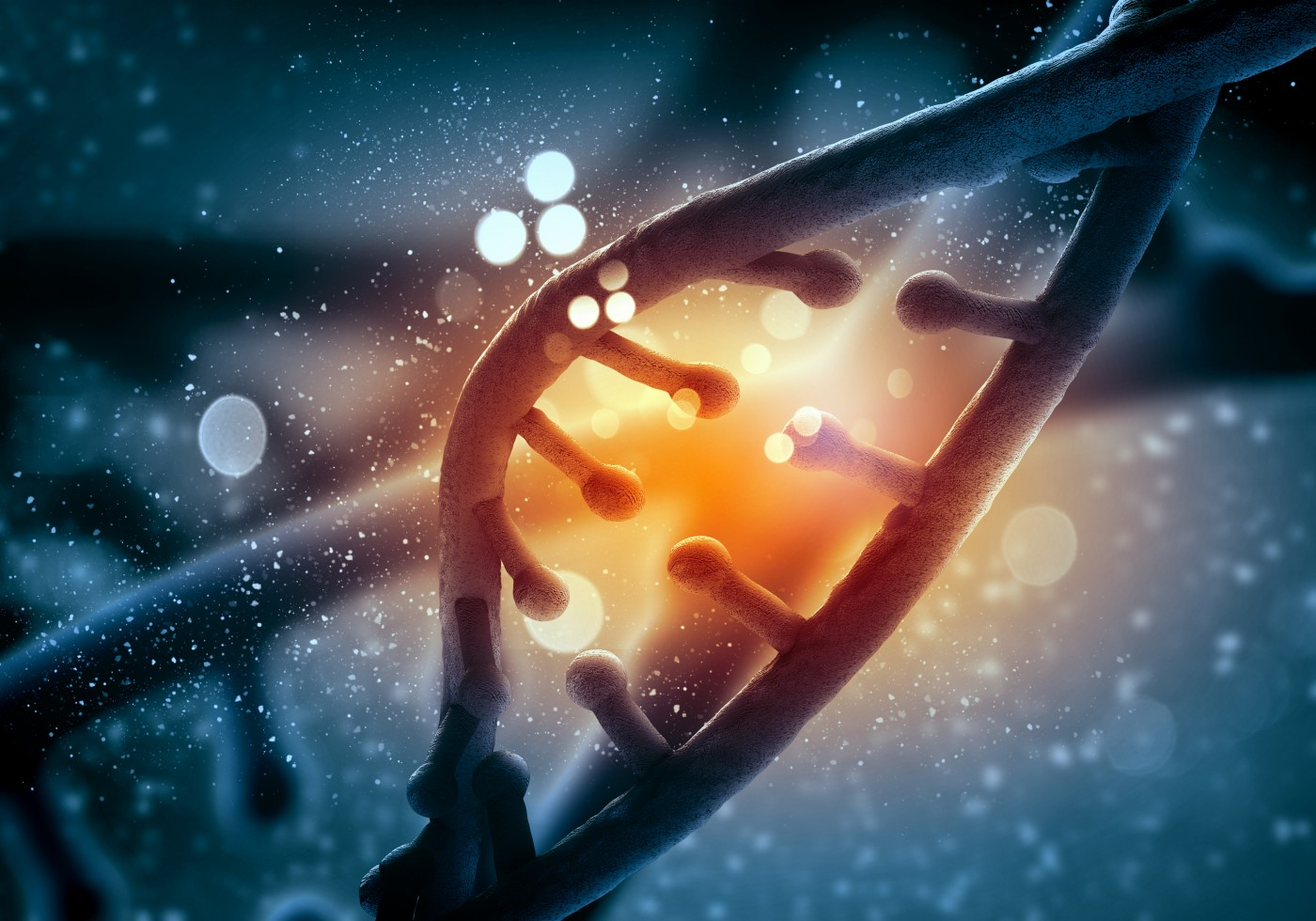 Study Shows Altered Mitochondrial DNA Changes Precede Bioenergetic Dysfunction in Diabetic Nephropathy