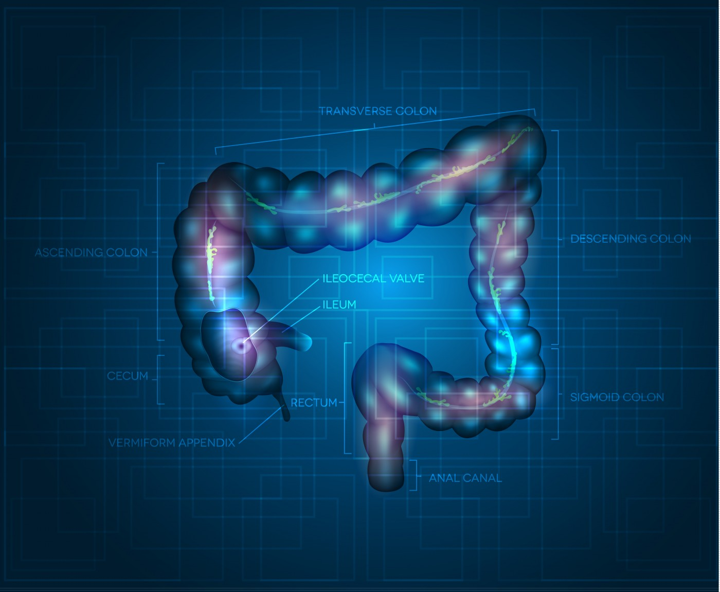 Novel Mitochondrial Biomarker Discovered for Colorectal Cancer