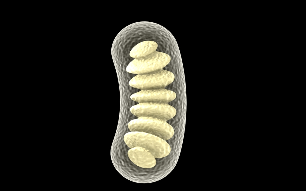 CohBar Files 29 Patent Applications Related to Peptide Discoveries in Mitochondrial Genome