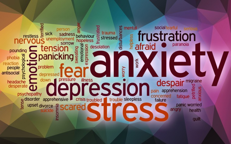 anxiety and MitQ