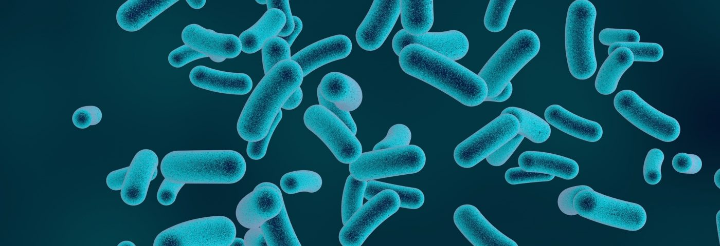 Mitochondrial Changes Help Immune Cells React to Bacteria