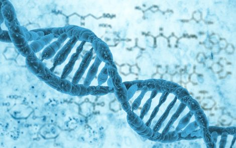 Mitochondria DNA Variation Could Lead to Autism, New Study Suggests