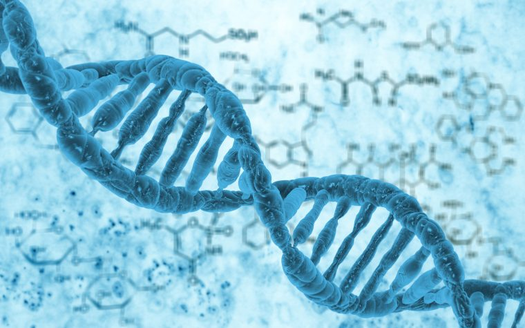 Variations in mitochondrial DNA could cause autism