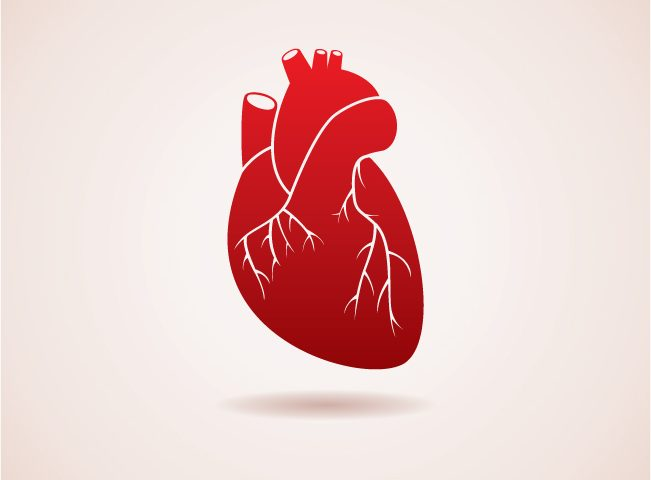 Phase 2 Trial on Therapy for Hospitalized Patients with Congestive Heart Failure Begun