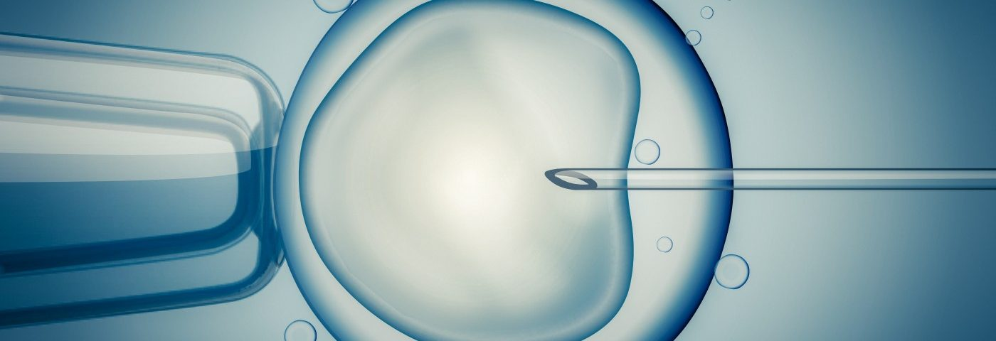 Likely Approval of Mitochondrial Replacement Will Open Door for First Three-Parent Baby in UK