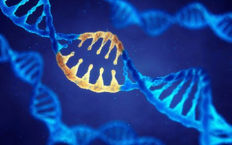 Gene Mutation Found in NDUFA10 Again Leads to Energy Deficiency and Leigh Syndrome, a Case Report Says