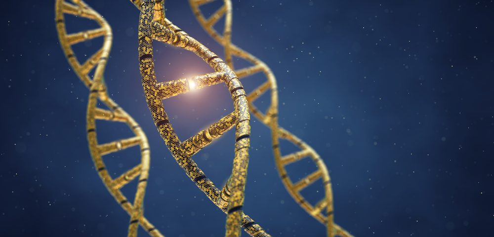 Mitochondrial Mutation May Cause Maternally Inherited Hypertension, Study Suggests